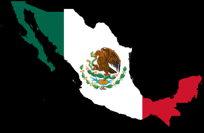 Criminal Sanctions for Cartel Conduct in Mexico