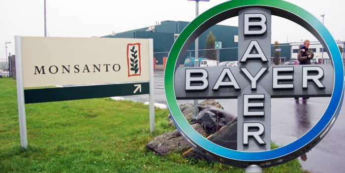 EU: Bayer CEO says talks with EU over Monsanto are productive