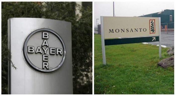 EU: EC starts in-depth probe of Bayer, Monsanto deal