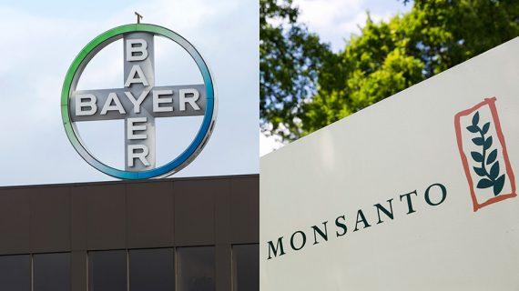 Brasil: CADE amplía su revisión a fusión Bayer/Monsanto