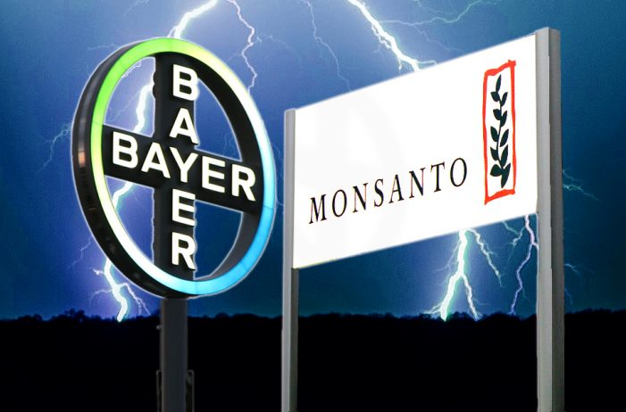 US: Farmers worry about Bayer-Monsanto merger