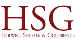 US: Holwell Shuster & Goldberg names partner