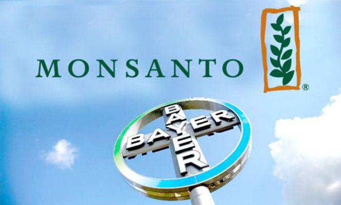 Brasil: Fusión Bayer-Monsanto aprobada con condiciones