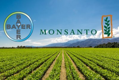 US: Farmers against merger of Monsanto with Bayer