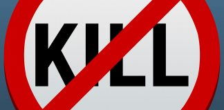 The No Kill Zone: The Other Side of Pharma Acquisitions