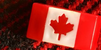 Canadian Merger Review Assessing Failing Firm Claims Market Conditions Disrupted by COVID-19
