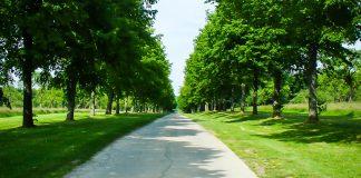The New Landscape in FRAND Litigation