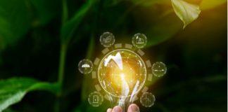 Green Antitrust Sustainability